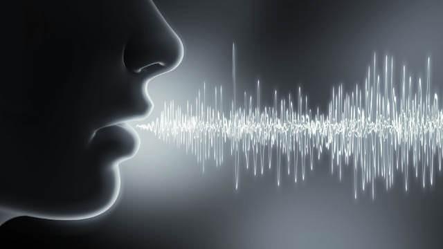 Sprachanalyse aus der deutschen Cloud: Auf einen Blick mit einem Klick